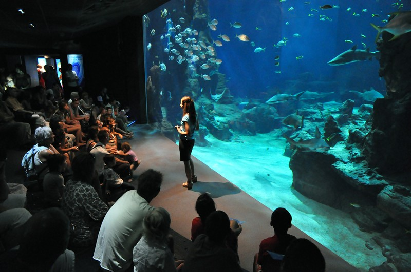 Aquarium Odysseum