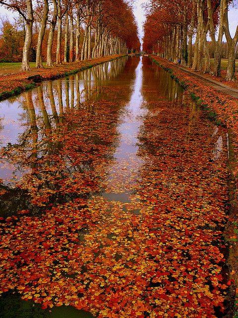 Herfst in Occitanië